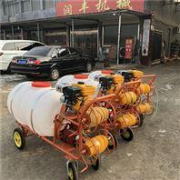 四轮推车喷雾机 喷雾器生产厂家