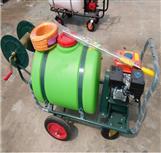 河南高压泵打药车 手推400升药桶喷雾器