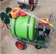 农作物稻田喷雾器 手推喷雾机双缠管器