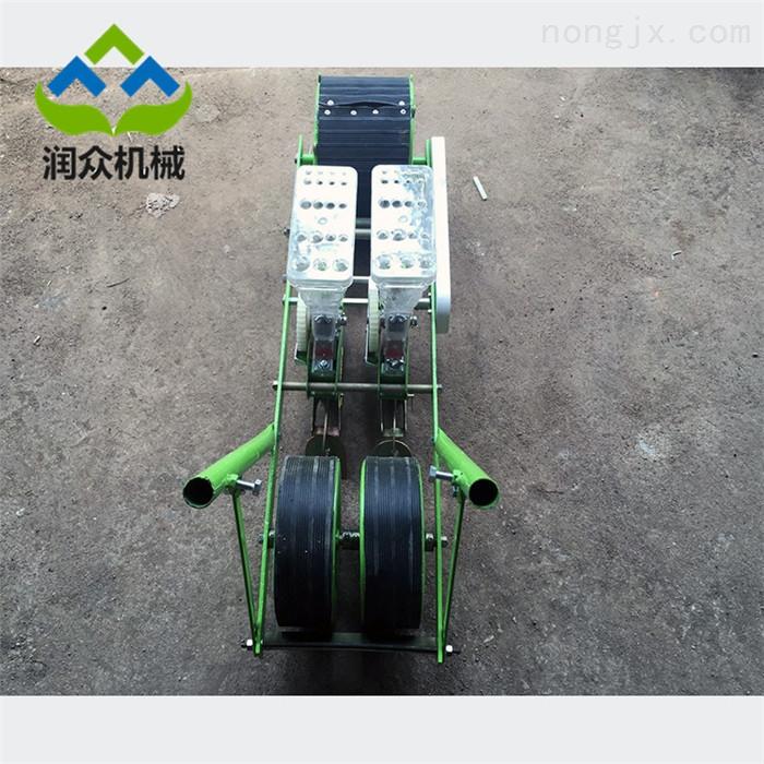 RZ-BZ-汽油機蔬菜播種機 1米寬蔬菜精播機廠家