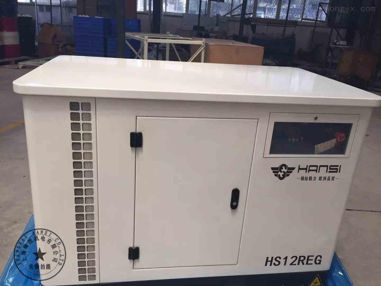 翰丝12KW汽油发电机