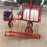 自走式高杆喷雾器 宽幅打药机 高压泵喷雾机
