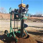 FX-WKJ家用果树施肥挖坑机 栽树种树打眼机厂家