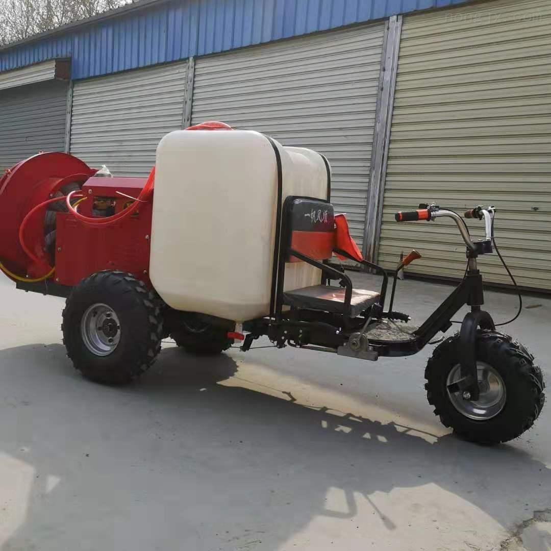 农用喷雾机消毒杀虫机 汽油轻便喷雾器