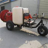 拉管式柴油喷雾器价格 高压风送式打药机