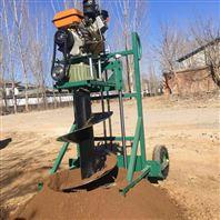 手提式植树挖坑机 园林植树汽油打洞机