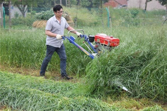 稻麦专用手扶式割晒机 柴油青干牧草割草机