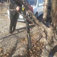 新款大马力铲头挖树机
