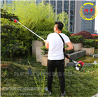 植物修剪枝杈高枝锯 四冲程4米高枝油锯