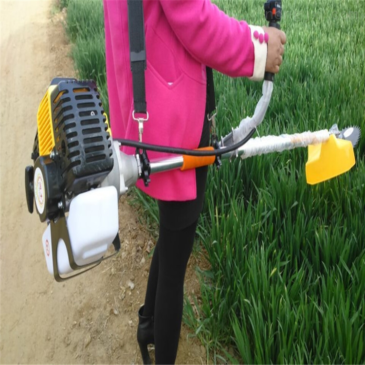 灌木汽油割灌机 农场牧草割草机 打草机厂家