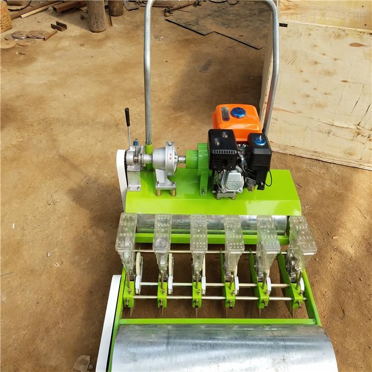 白菜穴播机 蔬菜精密播种机 播种4行蔬菜机