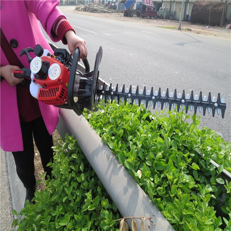 优质小型汽油绿篱机 园林修剪机