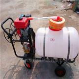 自吸式高壓遠程汽油噴霧器 稻麥殺蟲噴藥機