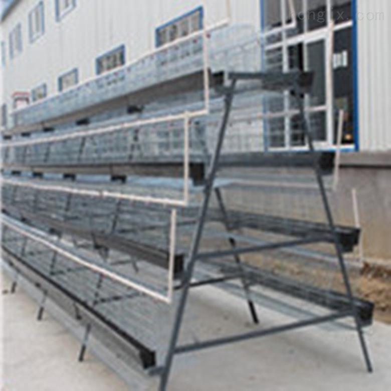 高层养殖养鸡设备立体式养殖鸡笼设备