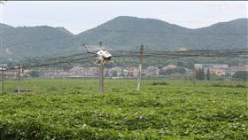CD-15农药喷洒无人直升机