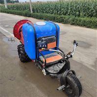 300升高压农用喷雾器 手推柴油四轮消毒机