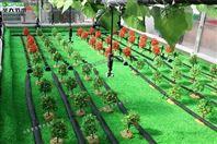 淄博果园水肥一体化滴灌方案设计及清单报价