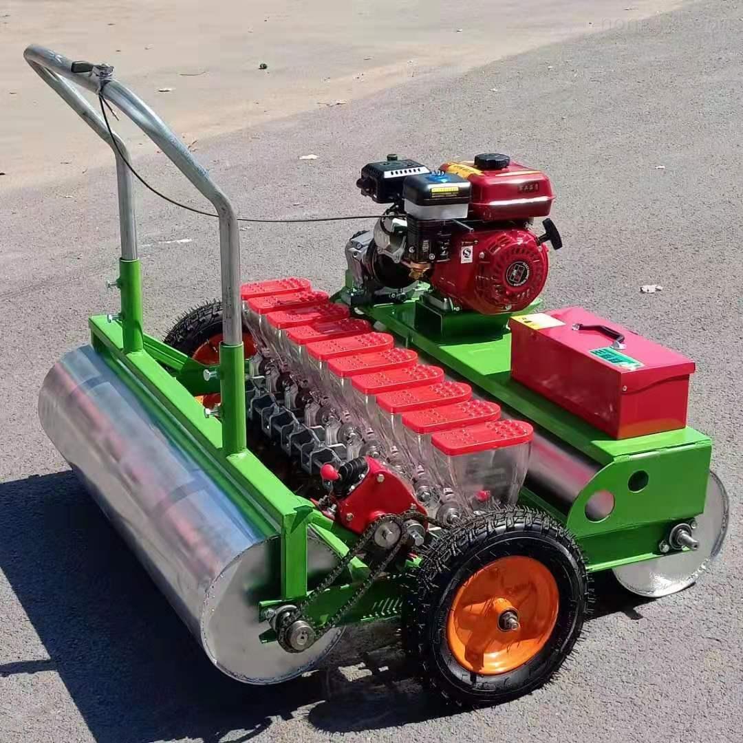 RZ-BZ-青菜手推播种机 叶菜专用精播机 蔬菜种植机