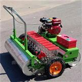 机械化种植油菜播种机 汽油多行洋葱精播机