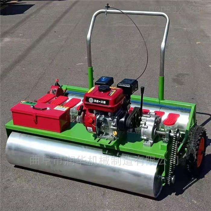 RH-BZJ-8-汽油5行茼蒿播种机 手推式香菜精播机