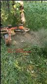 自动避让式除草机高效实惠