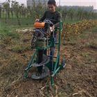 FX-WKJ园林绿化打眼机 手推独轮植树挖坑机视频
