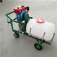 农用手推式汽油打药机 农田园林喷雾器