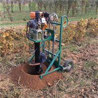 手提打洞机 汽油挖坑地钻机