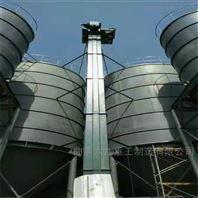 斗式装罐垂直提升机 焊接钢斗式上料机Lj1