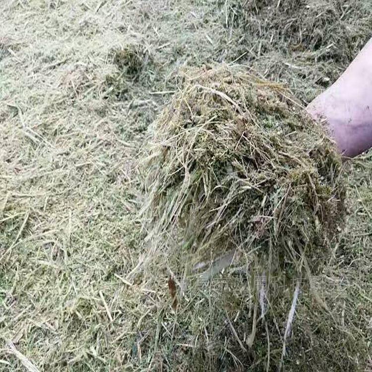 山 大中小型玉米秸秆揉搓机专业定制