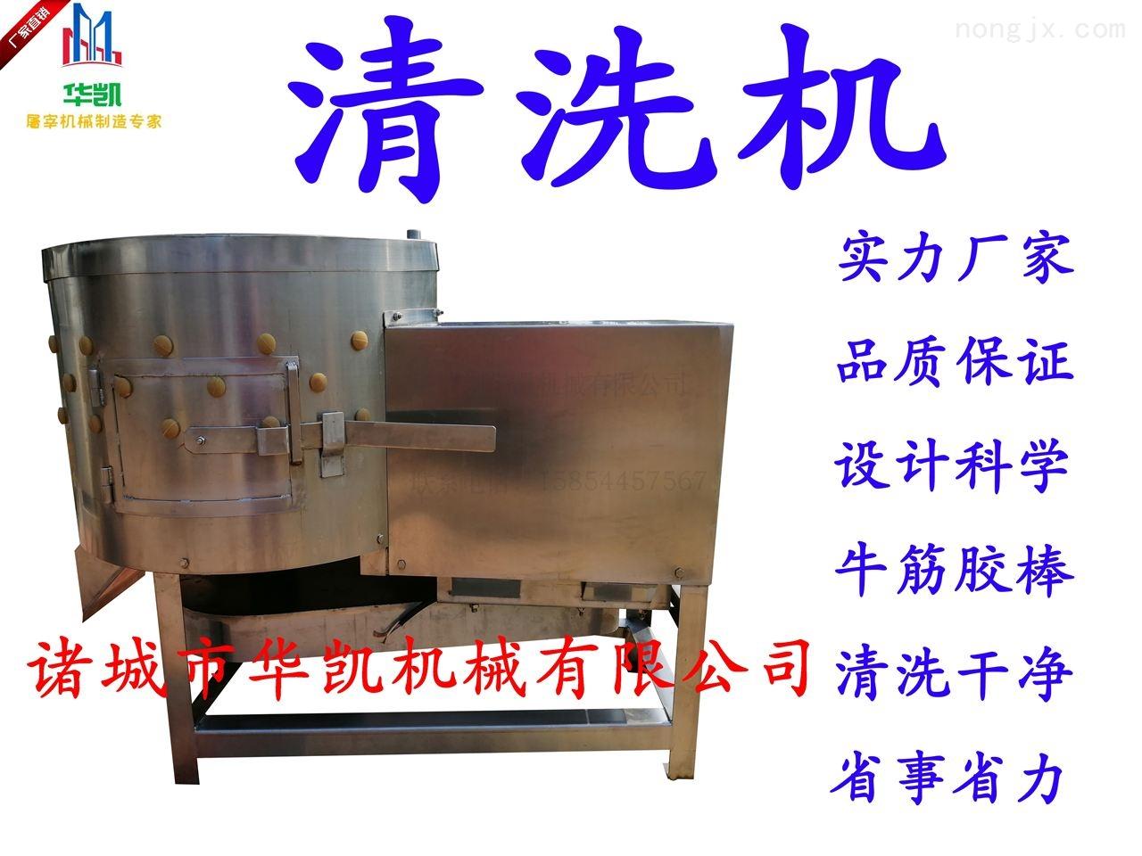 HK-QX60-猪肚清洗机 牛肚打毛清洗设备