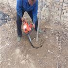 强劲铲头切树机 刨树根挖树机 根保活起树机