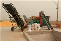 干濕兩大型玉米脫粒機廠家現貨供應