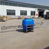 FQSP-100L汽油远程喷雾器风送式喷药机