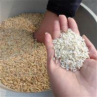 產量穩定水稻去皮碾米機