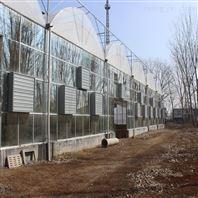 建达JD 薄膜连栋大棚 连栋温室骨架