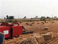 三夏农忙季:麦赛福格森全系列打捆机驰骋金色麦田
