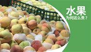 来自千赢国际城人的反思:如何让普通老百姓都吃得起水果?