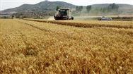 农、财两部关于进一步做好农业生产社会化服务工作的通知