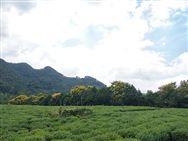 山西省关于全省农机购置补贴实施进度的第二次通报