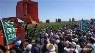 2019中国?庞口第二届华北农机地头展在庞口成功举办