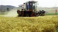 贵州省关于支付2019年中国农民丰收节补助经费的通知