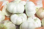 第十一届中国安徽名优农产品暨农业产业化交易会在合肥举行