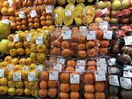 廣西象州縣農機中心召開水果生產機械推廣現場會