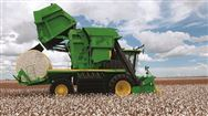 霜降:棉白万顷采收忙,采棉机成棉花产区主力军