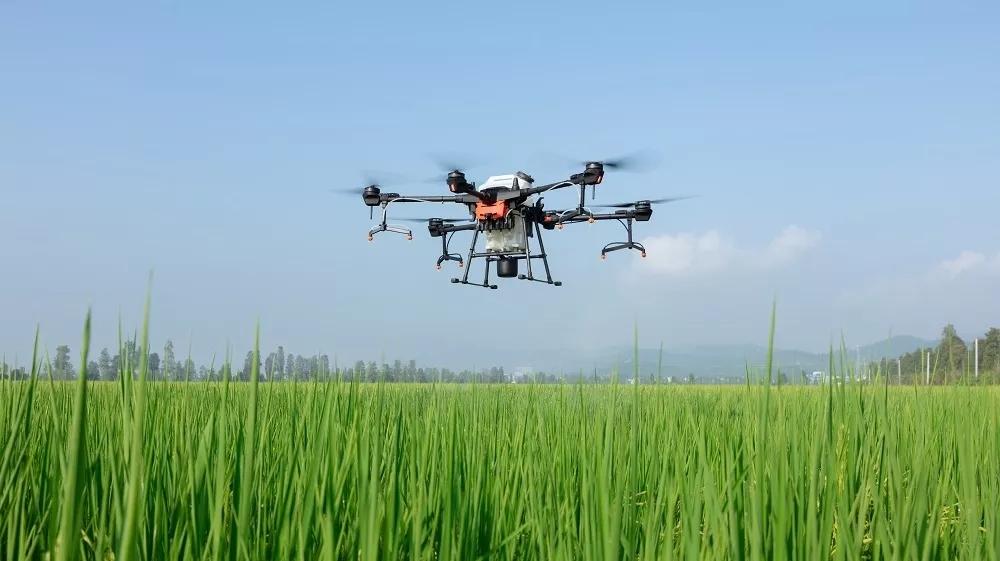 安徽省农业农村厅关于启用2020年千赢国际城购置补贴辅助管理系统的通知