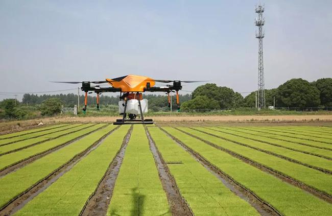 云南省关于抓好2020年粮食生产工作的通知