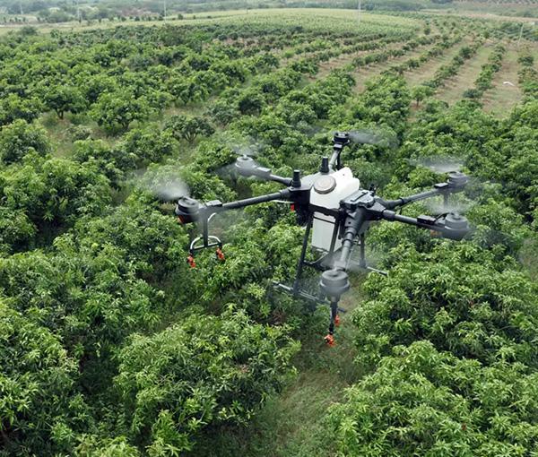 广西召开农业农村系统抗击疫情做好2020年春耕农机化生产工作视频调度会