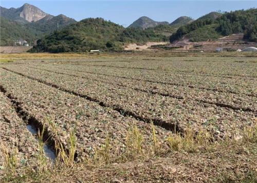 惠农便农!吉林省扩大农机补贴范围、优化办理步骤